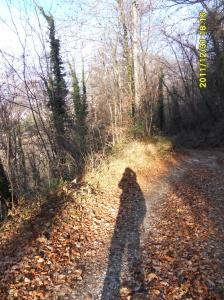 Carenno的小荒山。孤独的自由。